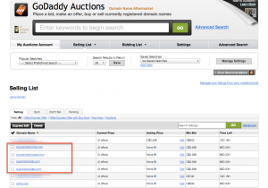 godaddy_auction